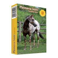 Karty hrací - Kvarteto Koně