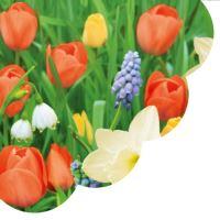 Ubrousky PAW R 32 cm Tulips Meadow