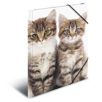 Deska s gumičkou PP A4 Cats
