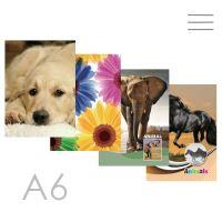 Kniha záznamní A6 linkovaná - 96 listová, Children Design