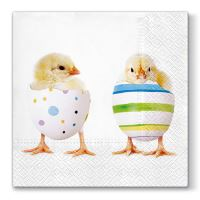 Obrousky PAW L 33X33cm Chick Fashion