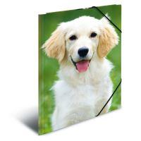 Deska s gumičkou PP A4 Dogs