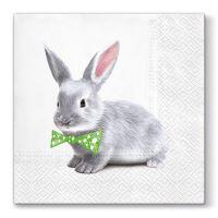Ubrousky PAW L 33x33cm Ben Bunny