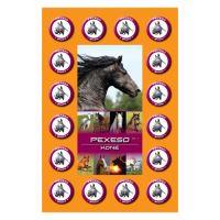 Pexeso A4 Koně