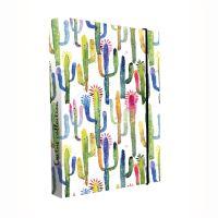 Box na sešity A4 Jumbo Kaktus