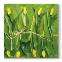 Obrousky PAW L 33x33cm Fresh Tulips