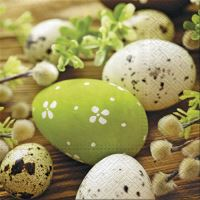 Obrousky PAW L 33X33cm Eggs Among Catkins